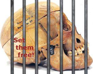 Menschliche Gebeine - Human Remains - Berlin Postkolonial - Just Listen - Set them free